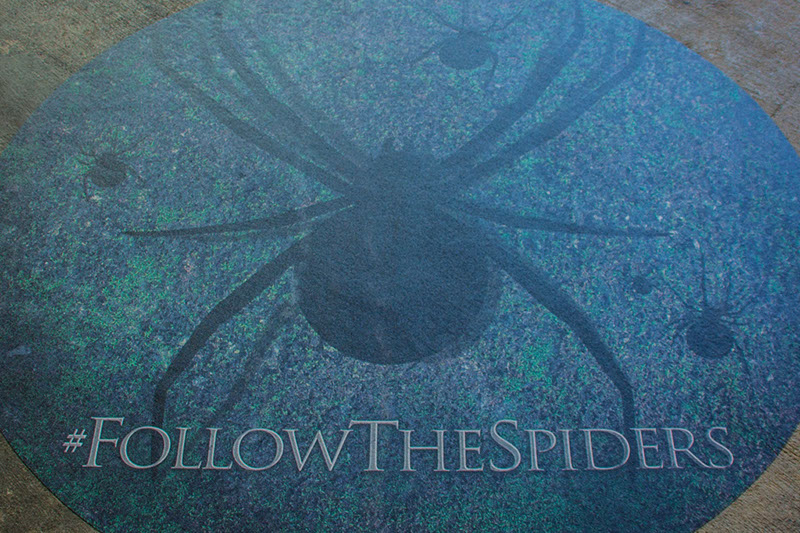 Harry Potter Follow The Spiders